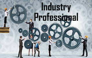 Industry Professional